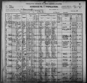 1900 census Anna Meyn