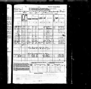 USFedCensusMortalitySchedules-1880-MEYN-Herman